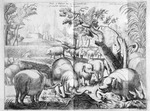 Flocks of elephants that lay wast whole forrests : a cornfield defended by a she elephant