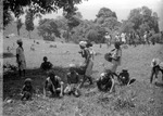 Agricultural ritual among Irulas