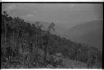 [Arunachal Pradesh landscape]