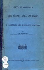 Outline grammar of the Angāmi Nāgā language