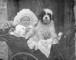 Photograph, 'Alfred Douglas [Comer?] Parnell aged 10 months. June 99'